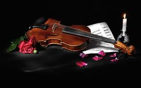 Картинка цветы, стиль, ноты, музыка, скрипка, розы, свеча, лепестки, черный фон, натюрморт, предметы, музыкальный инструмент, композиция