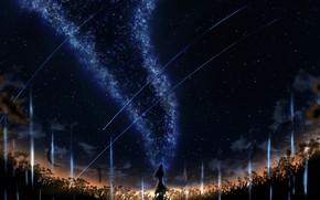 Картинка поле, девушка, ночь