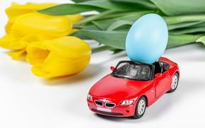 Картинка цветы, яйцо, Пасха, тюльпаны, белый фон, машинка, жёлтые тюльпаны, крашенка