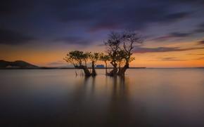 Картинка облака, дом, дерево, Индонезия, остров Ломбок, Awang Beach