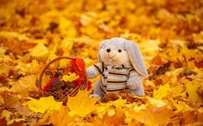Картинка осень, листья, игрушка, крзинка