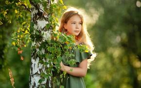 Картинка платье, девочка, берёзка, Sergey Piltnik