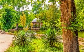 Обои зелень, солнце, деревья, пруд, парк, Испания, беседка, Sevilla, Maria Luisa Park