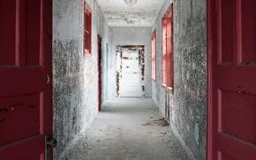 Обои стены, двери, коридор