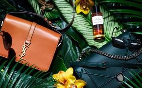 Картинка листья, духи, очки, сумка, орхидея, бренд