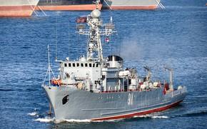Картинка морской, тральщик, черноморский флот, иван голубец