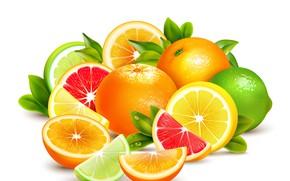 Картинка апельсин, лайм, фрукты, цитрусовые