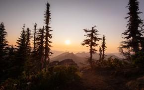 Картинка небо, солнце, свет, деревья, закат, горы, туман, рассвет, даль, ели, силуэты
