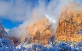 Картинка зима, солнце, облака, снег, деревья, горы, камни, скалы, Юта, США, Zion National Park, Зайон