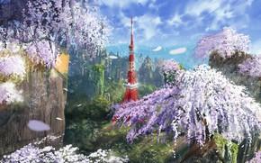 Картинка горы, сакура, цветение, токийская башня
