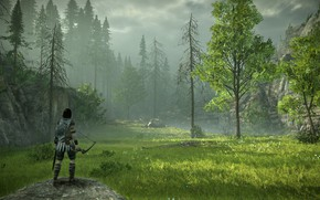Картинка лес, трава, луг, Shadow of the Colossus, В тени колосса