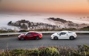 Картинка пара, Alfa Romeo 4C, 2017