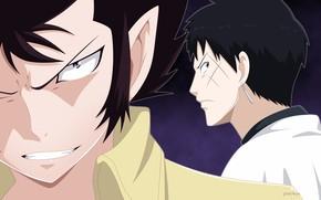 Картинка аниме, арт, парни, персонажи, Fairy Tail, Хвост феи