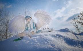 Картинка зима, снег, игрушка, крылья, кукла