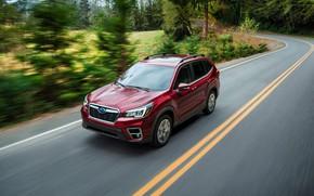 Картинка Subaru, кроссовер, SUV, Forester, 2019