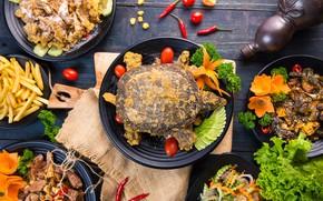 Картинка черепаха, сервировка, азиатская кухня, салаты