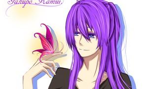 Картинка бабочка, арт, парень, Vocaloid, Вокалоид, Kamui Gakupo