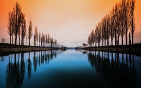 Картинка trees, water, lake constance