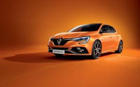 Картинка Renault, Trophy, Megane, R.S., 2020