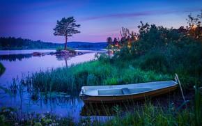 Картинка небо, трава, огни, синева, дерево, заросли, берег, лодка, вечер, кусты, водоем, сосна, голубые тона
