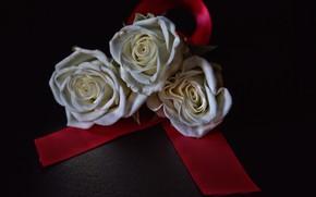 Картинка цветы, фон, розы