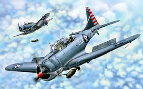 Картинка США, Палубный, пикирующий бомбардировщик, US Navy, Авиабомба, SBD Dauntless