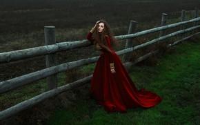 Картинка взгляд, девушка, поза, платье, Ann Nevreva