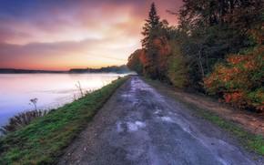 Обои дорога, осень, туман, река