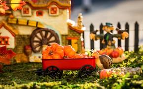 Картинка осень, трава, листья, макро, свет, дом, игра, игрушки, забор, улитка, сад, урожай, тыквы, тележка, красная, ...