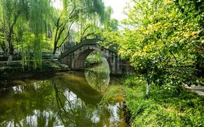 Картинка зелень, трава, солнце, деревья, мост, пруд, парк, Китай, кусты