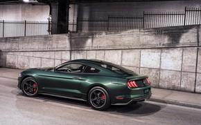 Картинка стена, улица, Ford, 2018, V8, Mustang Bullitt, 5.0 л., 460 л.с., фастбэк