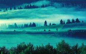 Картинка Туман, Утро, Поля