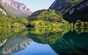 Картинка лето, вода, деревья, горы, озеро