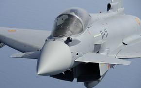 Картинка Eurofighter Typhoon, Пилот, ПГО, ИЛС, ОЛС, ВВС Испании, Истребитель