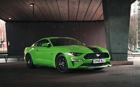 Картинка Mustang, Ford, Fastback, Mustang GT, 2019