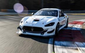 Картинка Maserati, гоночное авто, GranTurismo, гоночный трек, GT4, MC, 2019