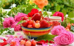 Обои Клубника, Кружка, Лепестки, Розы, Черешня, Roses, Strawberry, Cherries