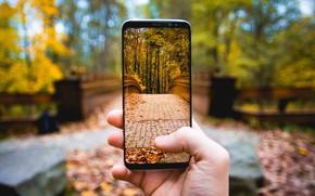 Картинка Phone, Photo, Picture, Autumn