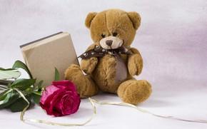 Картинка подарок, игрушка, роза, бутон, мишка