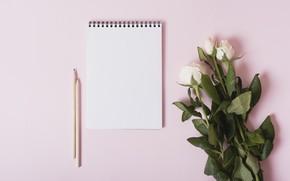 Картинка фон, розы, букет, белые, with, roses