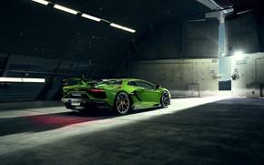 Картинка Lamborghini, суперкар, вид сзади, Aventador, Novitec, SVJ, 2019, Aventador SVJ