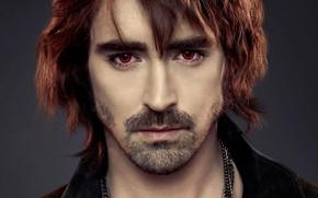 Картинка вампир, мужчина, щетина, Сумерки Сага Рассвет, The Twilight Saga Breaking Dawn - Part 2