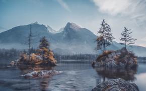 Картинка осень, лес, горы, туман, озеро, камни, скалы, берег, вершины, Германия, ели, Бавария, Альпы, дымка, островок, …