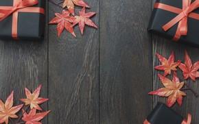 Картинка осень, листья, фон, дерево, подарки, halloween, wood, background, autumn, leaves, осенние, gifts, maple