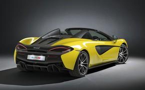 Обои McLaren, вид сзади, Spider, 570S
