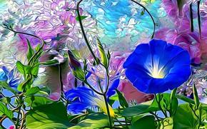 Картинка лето, листья, цветы, рендеринг, фон, стебли, растения, лепестки, бутоны, клумба, вьюнок