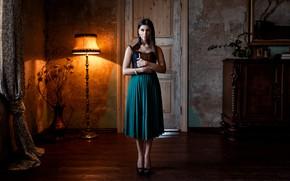 Картинка поза, комната, модель, лампа, портрет, макияж, платье, брюнетка, прическа, туфли, книга, красотка, стоит, торшер, Andrius …