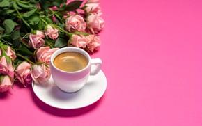Картинка фон, розовый, розы, чашка, Tania Shustyk