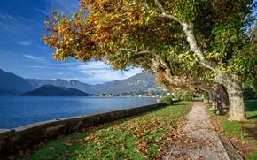Картинка осень, Италия, озеро Комо, Тремеццо