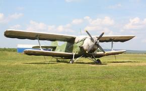 Картинка Самолёт, Ан-2, Кукурузник, Аннушка